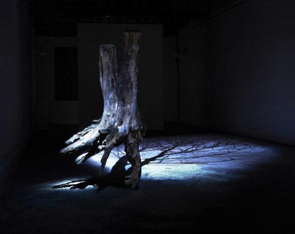 Andrea Santarlasci, L'altra luce del giorno, 2019, veduta dell'installazione (frammento di tronco di acacia con radice, sabbia di fiume e proiezione video). Foto Andrea Santarlasci