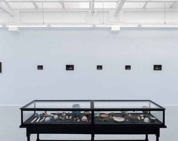 Sanam Khatibi, vista parziale della mostra Cyanide, alla galleria rodolphe janssen, 2020, ph courtesy rodolphe janssen, Brussels