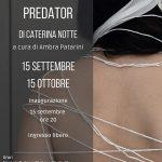 Caterina Notte. Predator