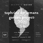 Michelle Guido | taphrina deformans garden project_2021